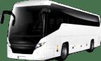 <b>Автобусы</b><br /> более 50 мест